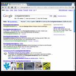 Sverigedemokraterna.de etta på Google