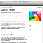 Virtuell Media och Metrobloggen